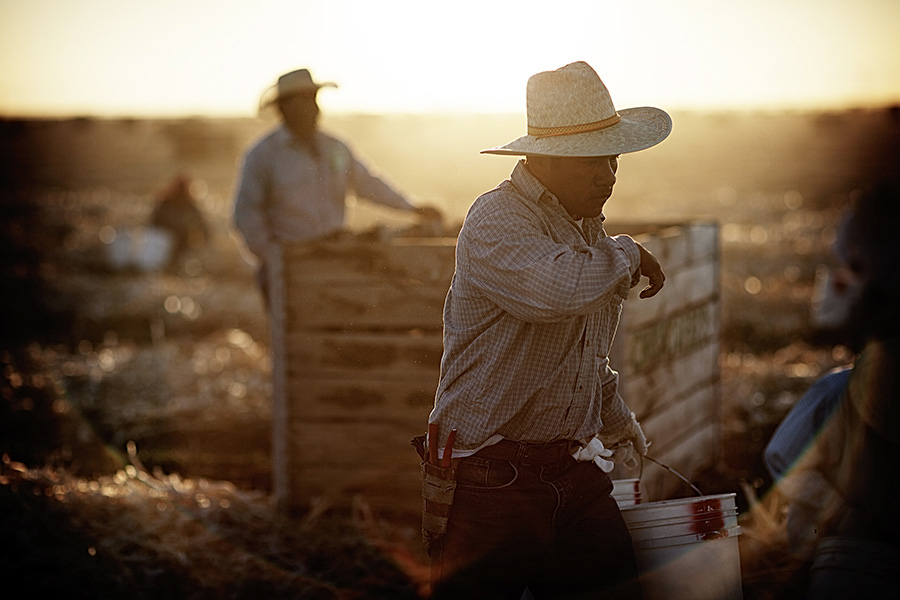 Striking Photos Show Struggle Of Farmers In California Drought
